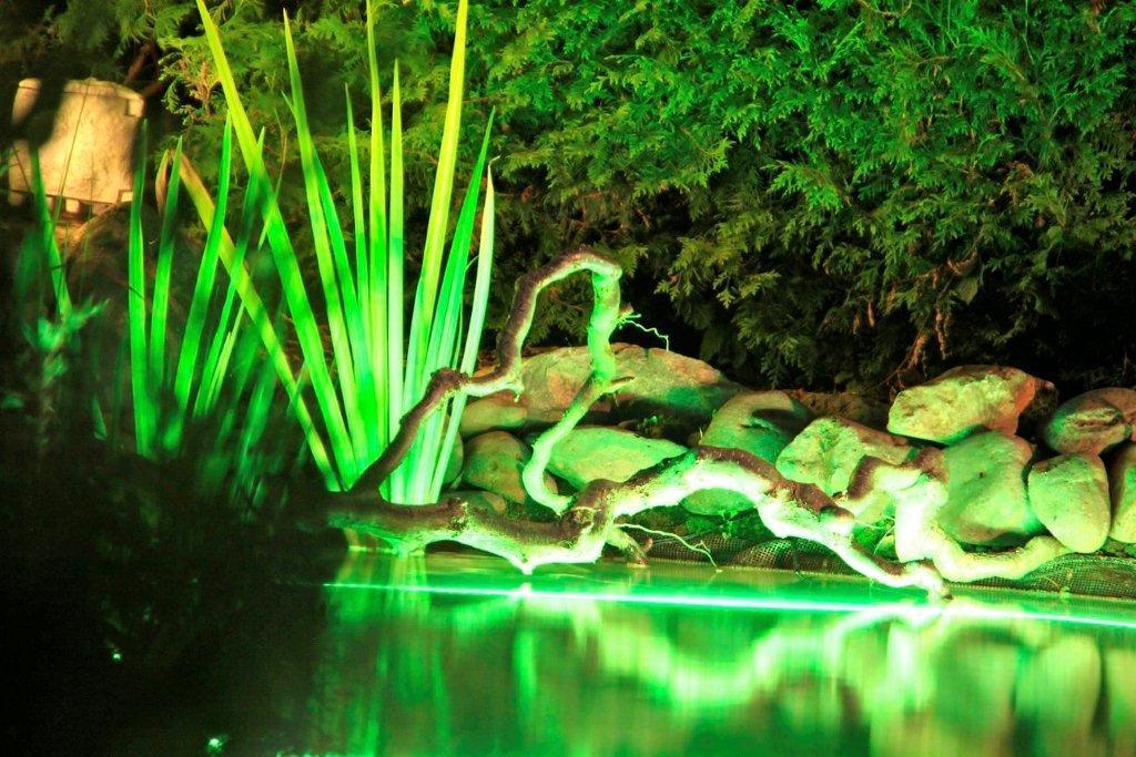 vulkangarten-und-illumination-12