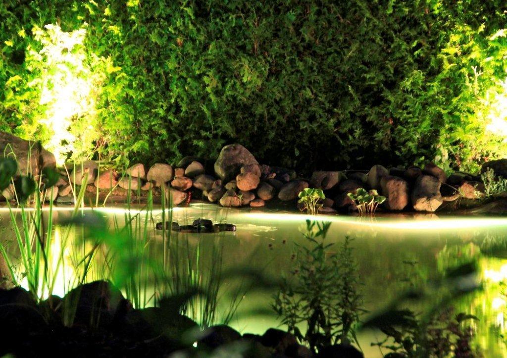 vulkangarten-und-illumination-13